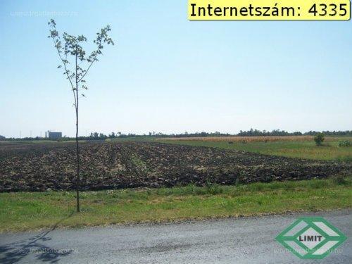 Algyő, Szegedi kistérség, ingatlan, eladó, telek, 22.824 m2, 28.530.000 Ft