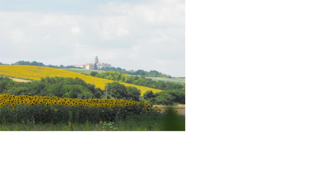 Pázmándfalu, Pannonhalmai kistérség, ingatlan, eladó, telek, 2.900.000 Ft