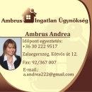 AMBRUS ANDREA