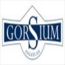 Gorsium Ingatlan