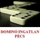 Domino Ingatlan